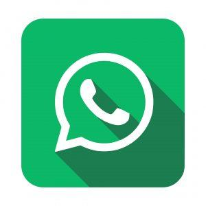 Chat, message or video call Borg Locks on WhatsApp during office hours