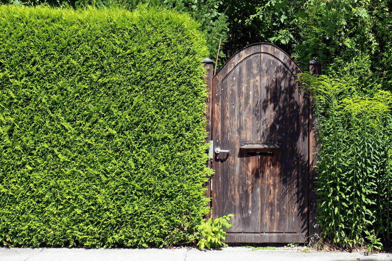 Picking the best lock for your garden gate